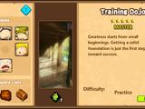 Training Dojo