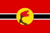 Новый флаг РЛ