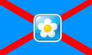 Флаг ССР