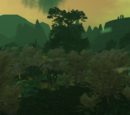 Dathomir Outpost and Koratas Colony