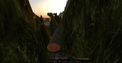 Zonama Sekot's log bridge