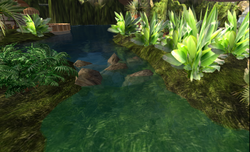 Zonama Sekot's small island bridge