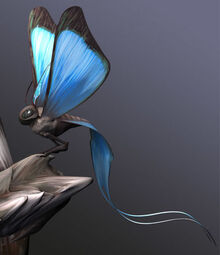 Carrier Butterfly