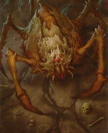 Nadir Spider