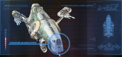 D-5 Mantis