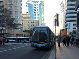 Scania K280/310UB Custom CB80