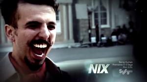 S02op-Nix