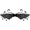 Wingsfae fire wings