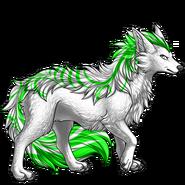 Image builder pet (5)