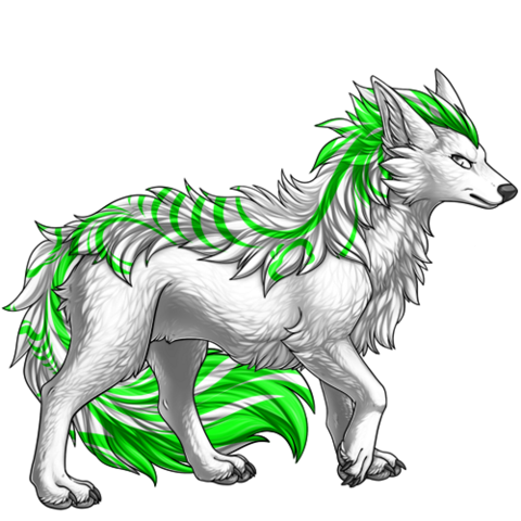 File:Image builder pet (5).png