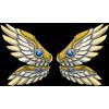 Wingsvalkyrie wings pristine