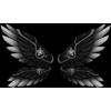 Wingsvalkyrie wings