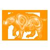 Essence mystical morkko