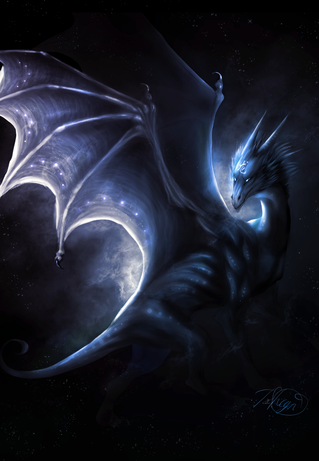 Great Wallpaper Night Dragon - latest?cb\u003d20150919190723  Best Photo Reference.png/revision/latest?cb\u003d20150919190723