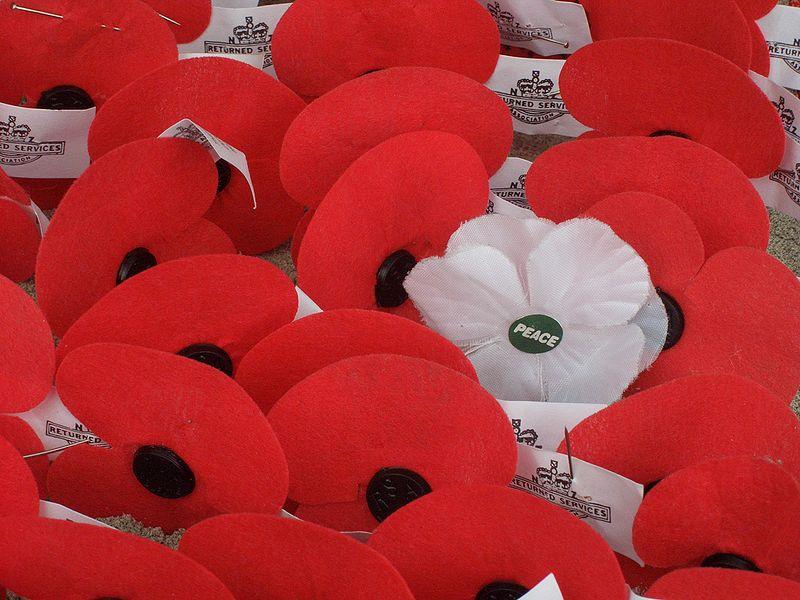 White Poppy Symbolism Wiki Fandom Powered By Wikia