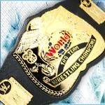 Wwe world tag team title