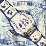 Tna tag team championship belt----
