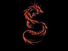 SSfire