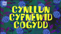 Cynllun Cyfnewid Cogydd