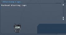 SFLS Blasting Caps Screen