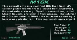 SFDM M16K Screen