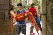 Pair of Kings Mermaids 4