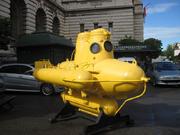 Yellow-sub