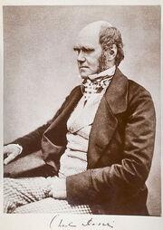 Charles Darwin seated