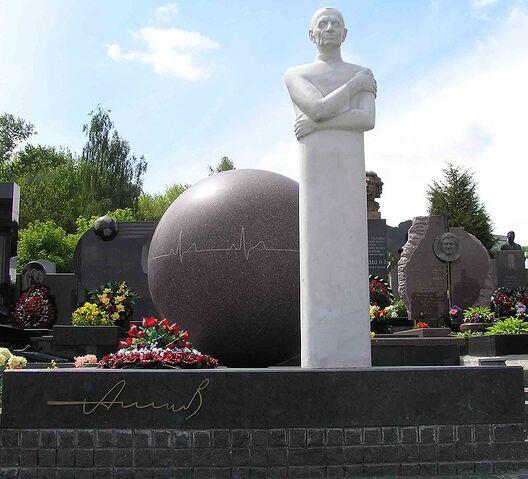 File:Grave Nikolay Amosov.jpg