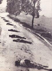 Muslim-terror-1956