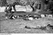 Greek 1941