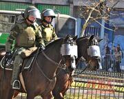 Chilean-police