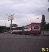 Szczecin w wakacje 032