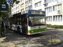 Szczecin w sierpniu (33)