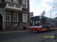 Szczecin w wakacje 089