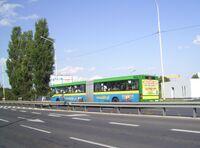 Szczecin w sierpniu (48)