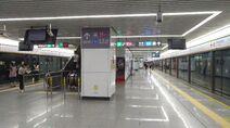 Shenzhen Metro Line 2 Futian Sta Platform