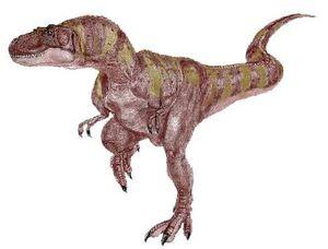 Albertosaurus5
