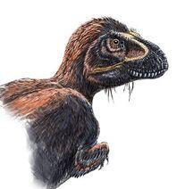 Fuzzy T. rex