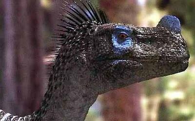 File:Ornitholestes3.jpg