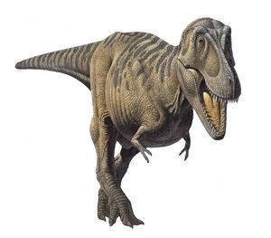 Tyrannosaurus bataar 2