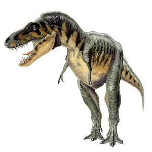 Tyrannosaurus bataar 5