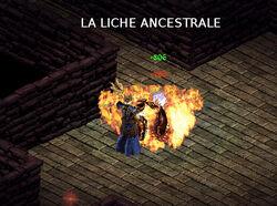 LicheA