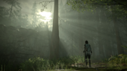 Shadow-of-the-colossus-screen-02-ps4