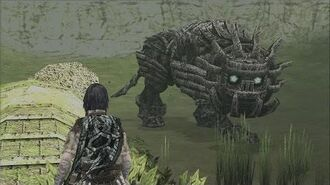 Shadow of the Colossus Cenobia Boss Fight 14 on PS3