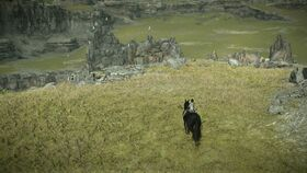 SHADOW OF THE COLOSSUS 20180301185121