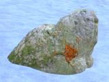 Plain Stone