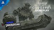 Shadow of the Colossus PS4 Gameplay PS Underground