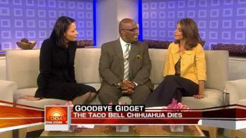 Gidget's Death - TODAY SHOW(7 23 09)