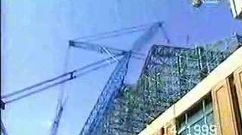 Big Blue Crane Coming Down